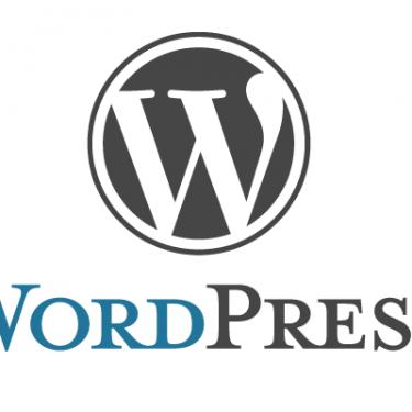 """Hébergement WordPress Géré - """"Début"""""""
